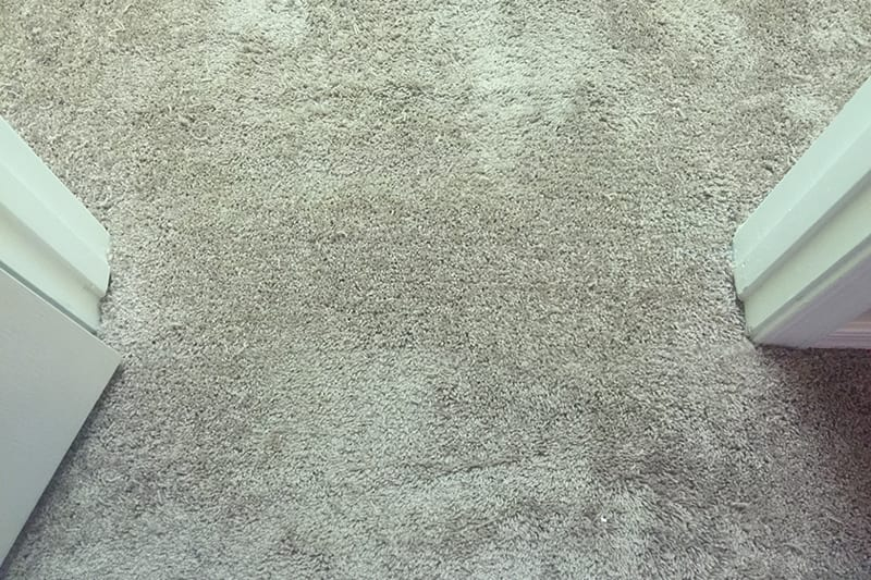 How To Repair Carpet Seam In Doorway Lets See Carpet New