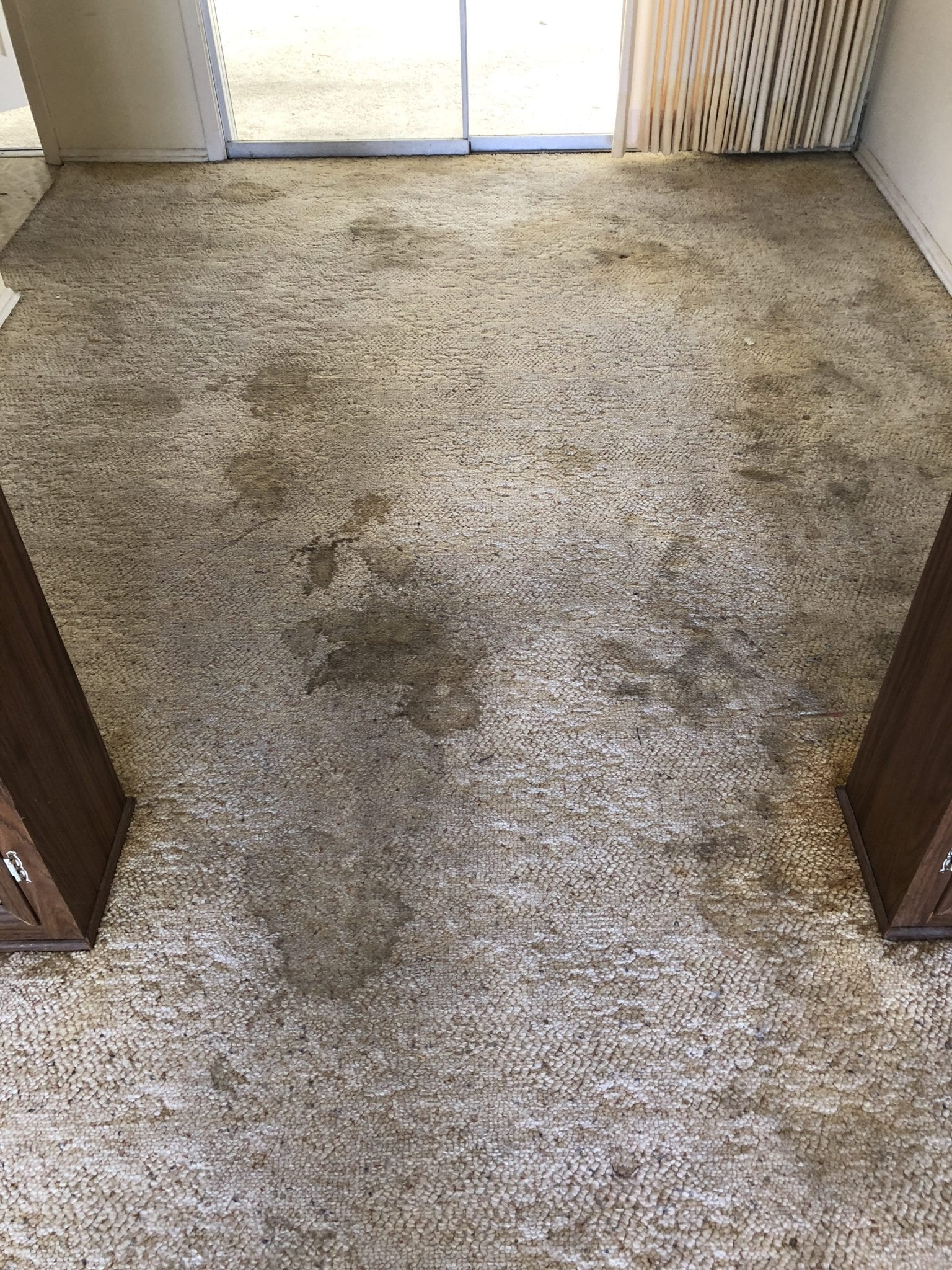 Flagstaff Carpet Cleaning